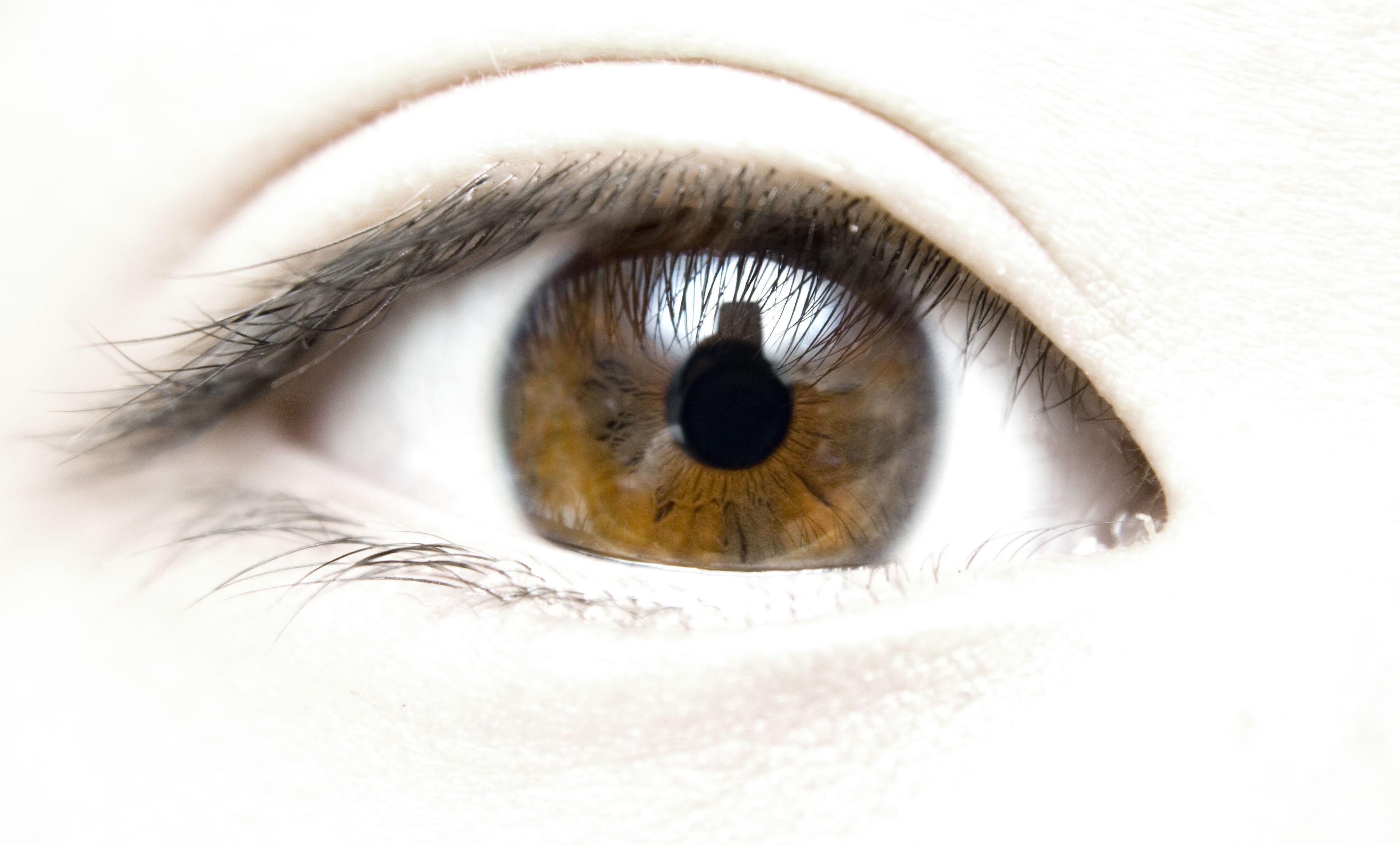 Ojos secos 4 ejercicios y 7 consejos para aliviar las for Las mejores alfombras de donde son